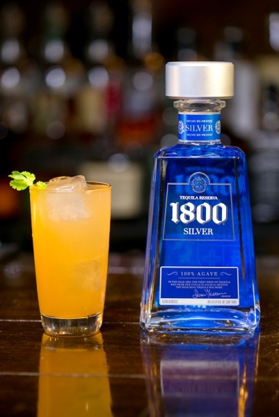 1800 tequila1